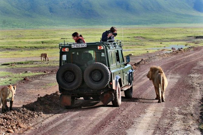 2 Day Private Safari in Lake Manyara and Ngorongoro Crater National Park