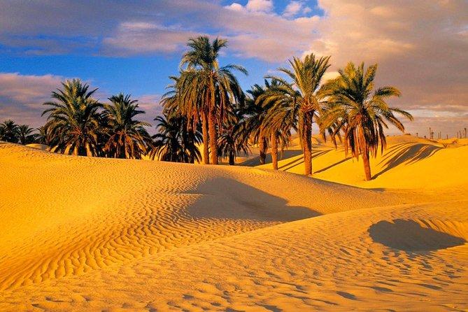 3 Day Private Berber Desert Tour - Marrakesh > Zagora