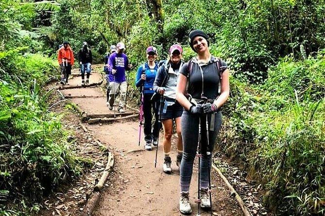 Mt Kilimanjaro Day Hike