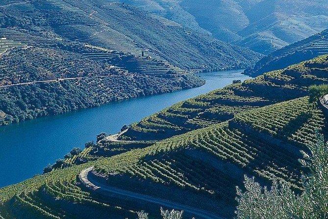 Transfer from Porto to the Douro Valley or Douro Valley to Porto