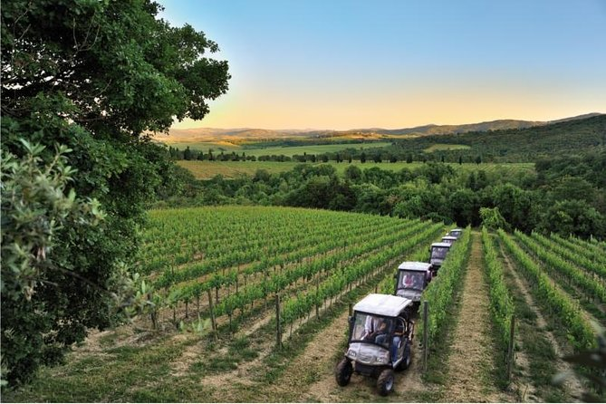 Eco-tour and Winery Visit at Cantina Monte Vibiano