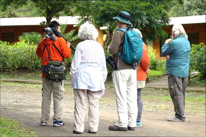 El Bosque Birdwatching Tour photo 6