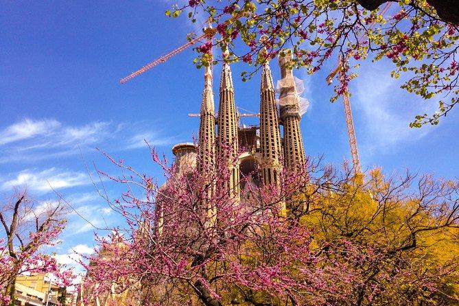 Barcelona eBike Tour with Sagrada Familia + Audioguide in your language