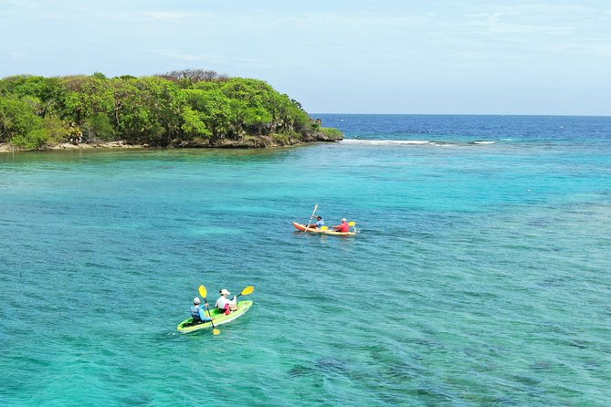 Roatan Shore Excursion: Kayak Harbor Adventure and Reef Snorkel