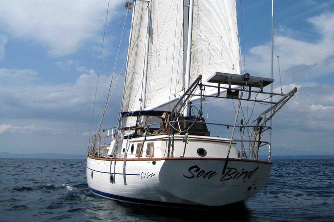 Snorkeling and Sunset Cruises