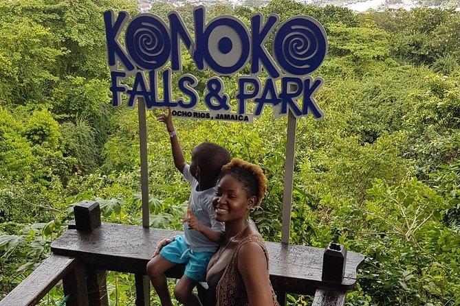 Konoko Falls & Park Private Tour
