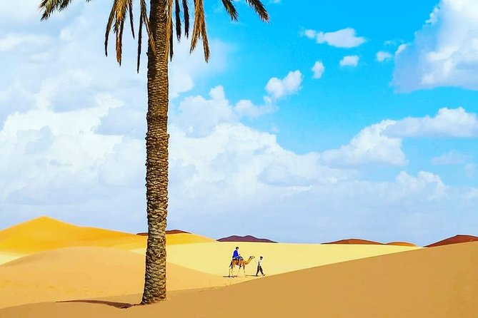 Casablanca Desert Trips