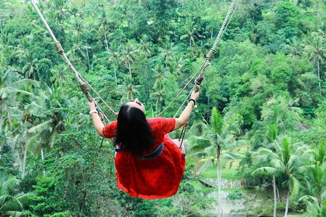 Private Tour Ubud Jungle Swing and Waterfalls