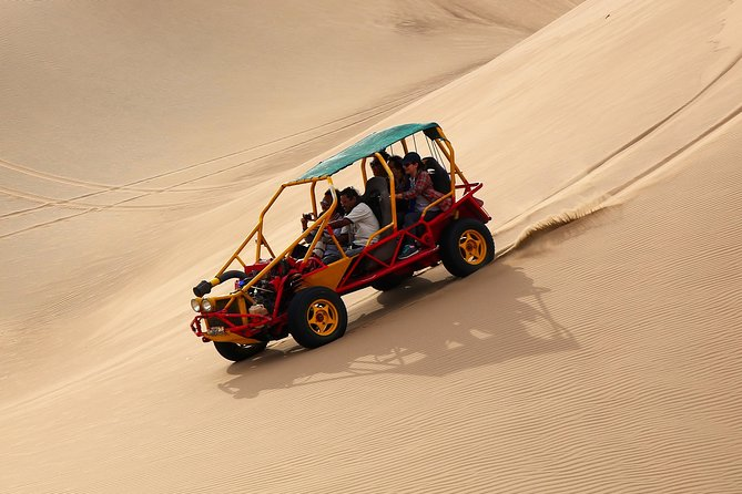 Private Tour to Paracas, Ica, Huacachina from Lima