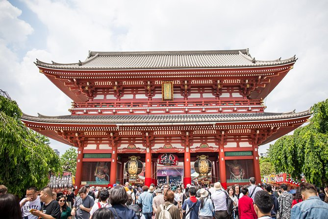 Tokyo 1-Day Highlights Tour with private guide
