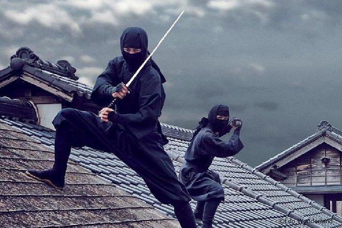 1-Day Nikko & Ninja Tour:World Hertage of Nikko Toshogu and Edo Wonderland