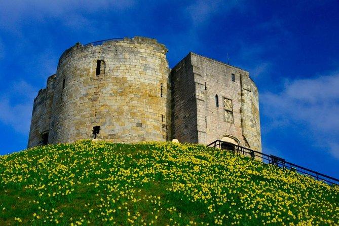 Clifford's Tower in daffodil season