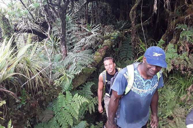 Climb Mount Tomanivi Fiji In A Day photo 2