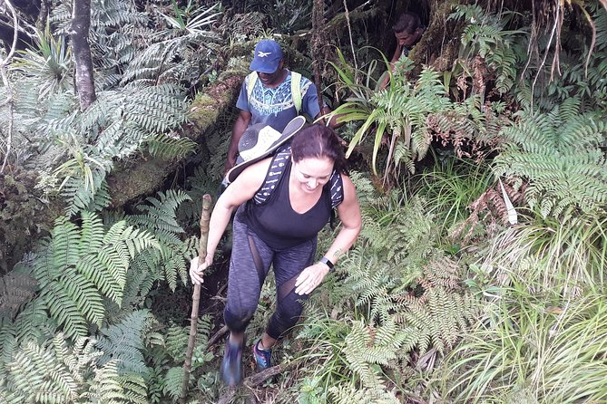 Climb Mount Tomanivi Fiji In A Day photo 14