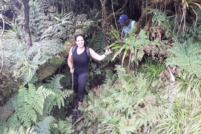 Climb Mount Tomanivi Fiji In A Day photo 7