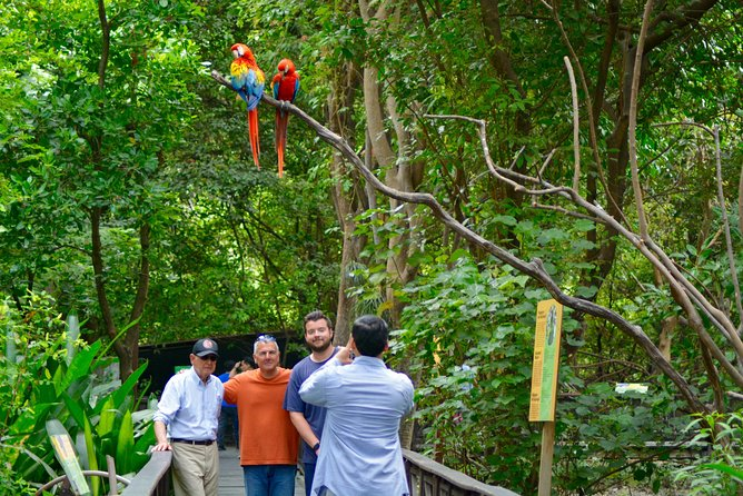 Half Day: Private Guayaquil City Tour & History Park