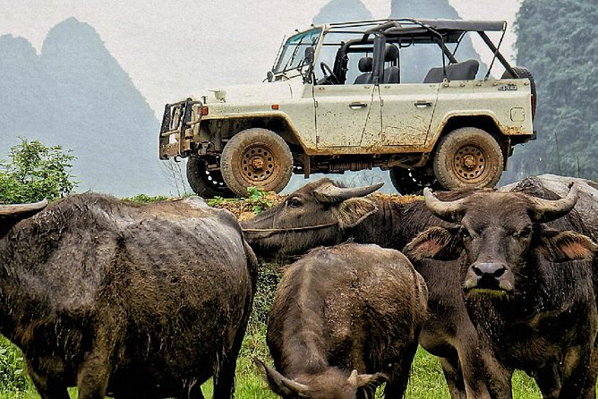 Vintage Jeep Adventure through Guilin Countryside