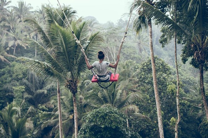 Explore Hidden Ubud Waterfall and Rice Terrace with Free Swing