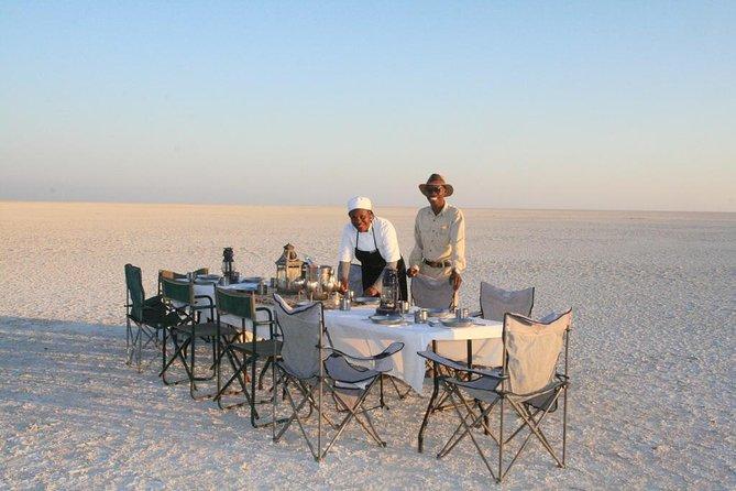 Salt Pans Overnight /start Maun /Sleep Under The Stars - Makgadikgadi & Meerkats