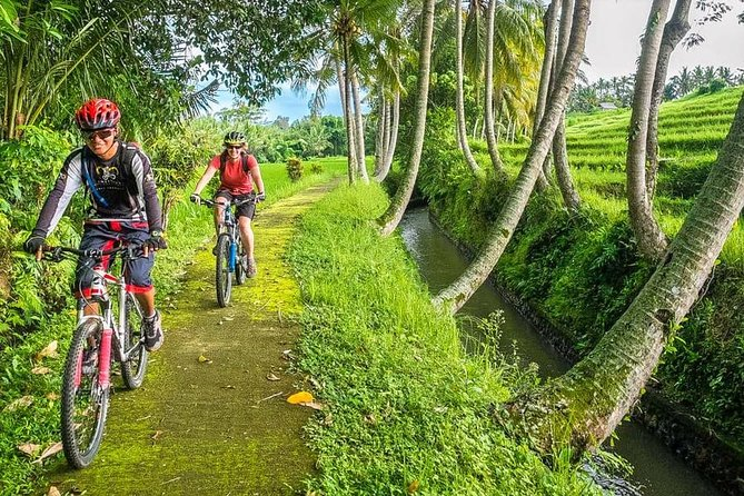Bali Downhill Cycling and White Water Rafting