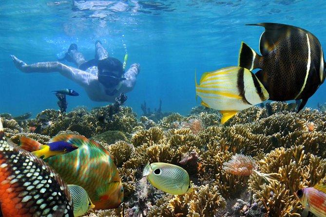 Blue Lagoon Snorkeling and Tanah Lot Tour