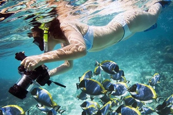 Best Snorkeling Activity in Blue Lagoon Bali