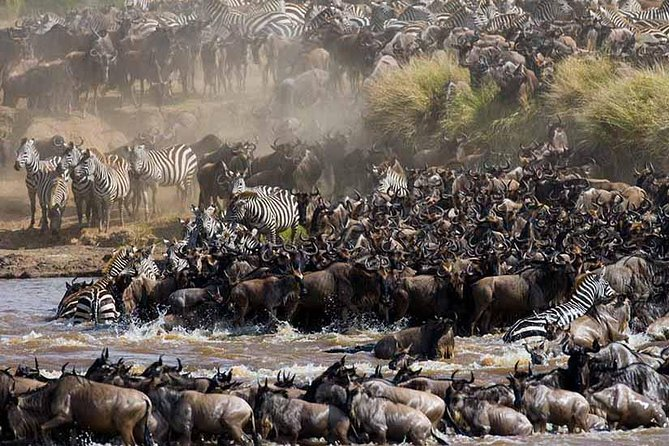 10 Days Tanzania and Kenya Wilderbeest Migration Footstep Safari