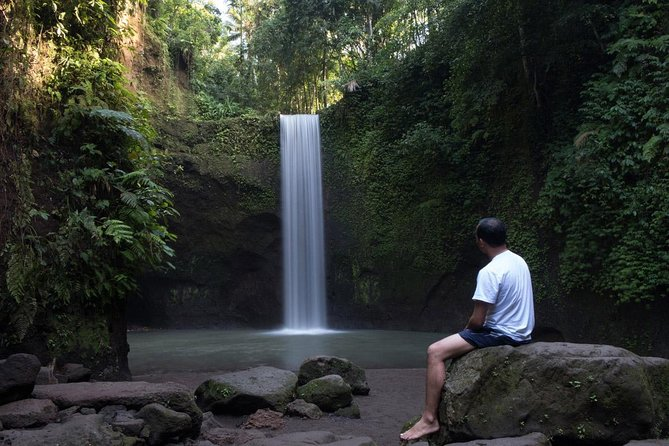 Tibumana Exotic Waterfall, Butterfly Park, and Monkey Forest Tour - Shared Tour