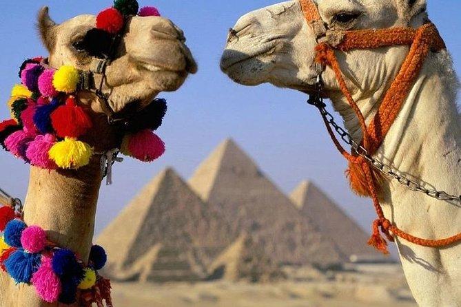 Half Day Tour to Giza Pyramids & Sphinx