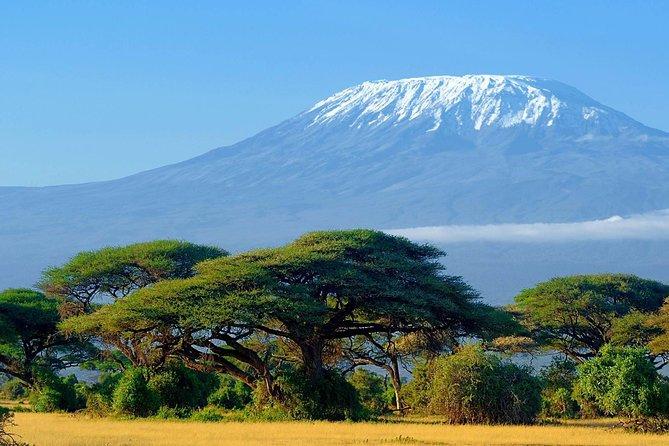 Mount Kilimanjaro Climbing 6days Rongai route (Standard)