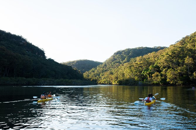 Pittwater Discovery Kayaking Tour