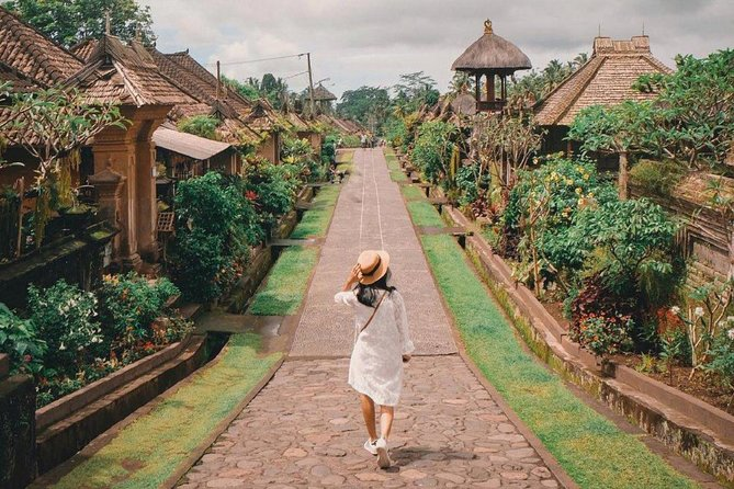 Bali Traditional Village and Temples Tour