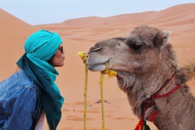 2 Days Nomad Desert Tour - Marrakech > Zagora > Marrakech