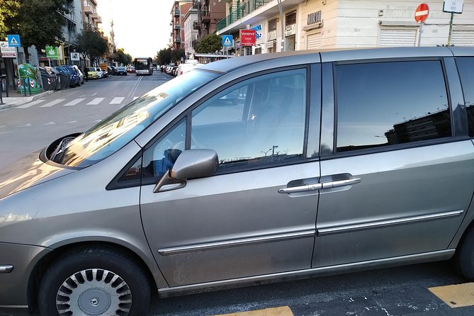 Private transport 1day tours for rome all attractions and vatican city
