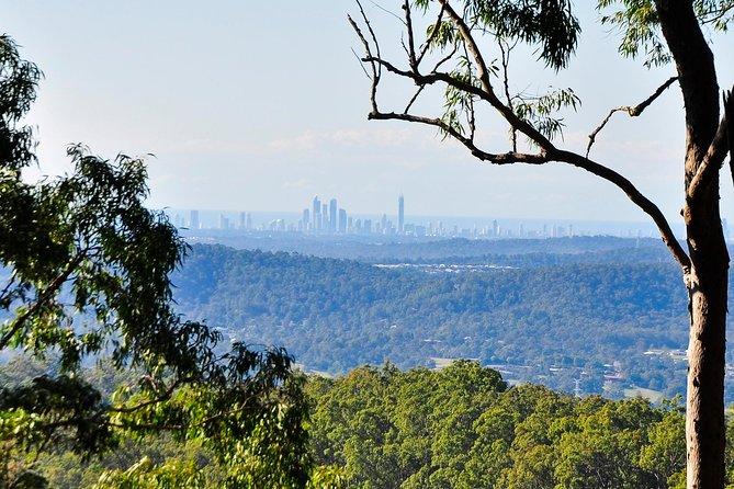 Gold Coast 4WD Eco Outback Tracks Tour