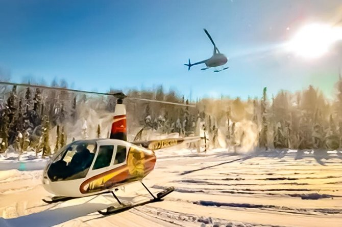 Winter Helicopter and Snowmobile Tour