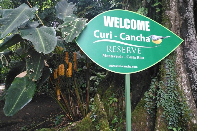 Regular tour Curicancha : TRANSPORT INCLUDED (NO ENTRANCE FEES INCLUDED)
