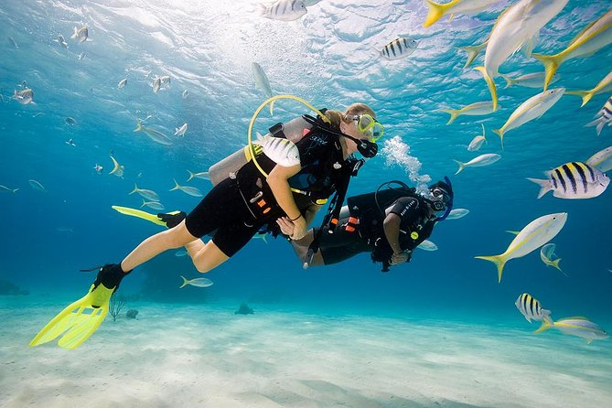 Bali Scuba Diving for Beginner at Tanjung Benoa