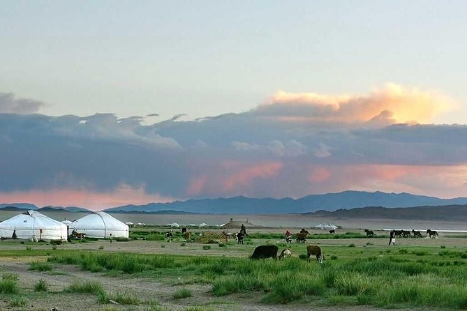 2 Day Central Mongolia & 1 Day to the Statue of Kenghis Khan and Terelj National