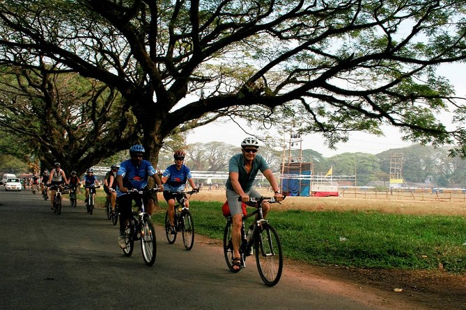 Cycling Tour from Cochin to Alleppey