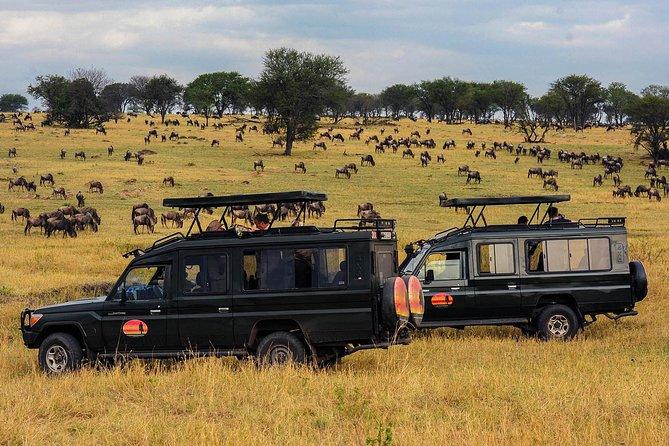 5 Day Mid-range Safari Serengeti, Ngorongoro Crater and Tarangire National Park