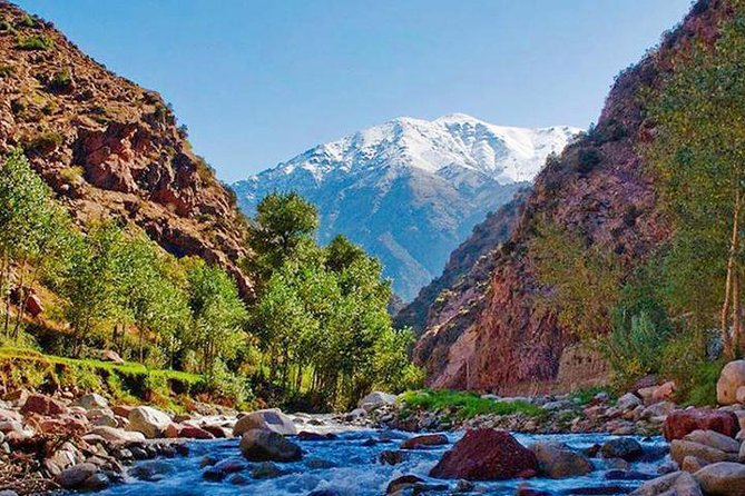 waterfall, camel ride and Ourika valley 1 Day trip from Marrakech