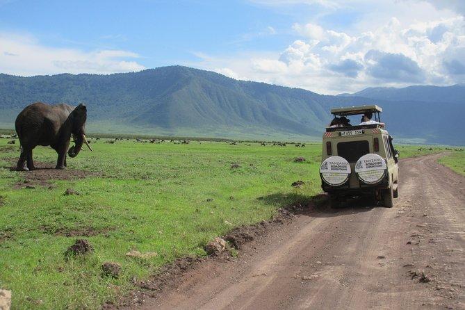 7 Days Family safari to Tarangire Serengeti and Ngorongoro Crater
