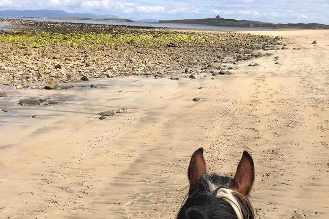 Beach horse ride. Moneygold, Co Sligo. Guided. 1, 2 or 3 hour options.