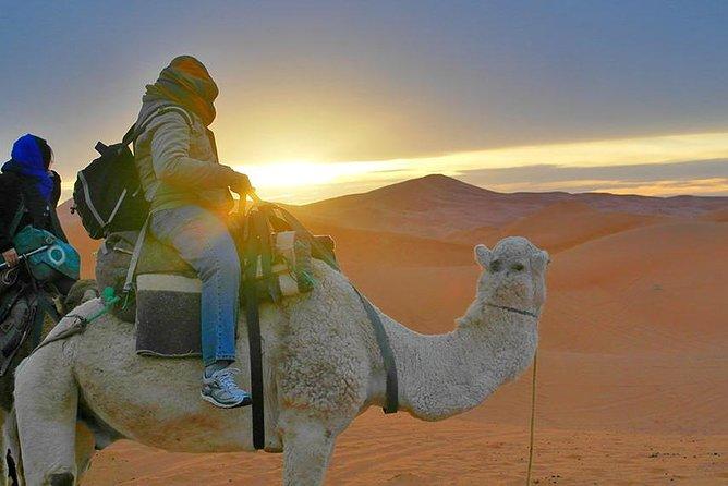 Private 3 Days Tour From Marrakech To Merzouga Desert