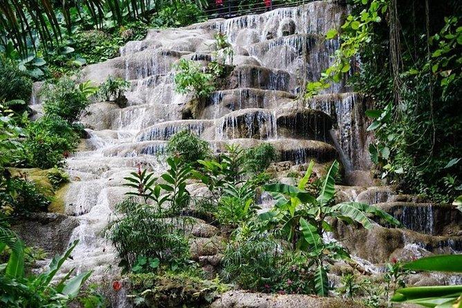 Konoko Falls and Garden Tour from Kingston