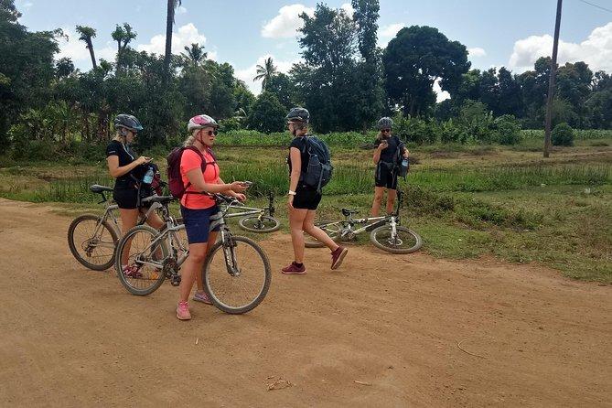 Monkey bike tour Moshi Tanzania