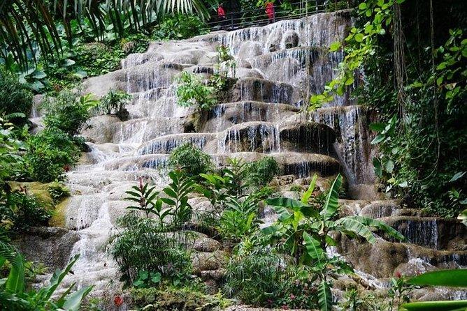 Konoko Falls and Garden Tour from Port Anotonio