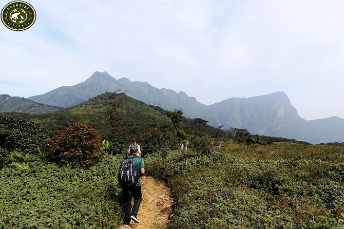 Exploring Knuckles mountain range - Kandy
