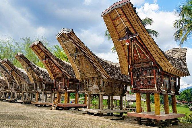 4 Days Toraja Cultural Tour from Makassar: Tongkonan Houses to Toraja Funerals